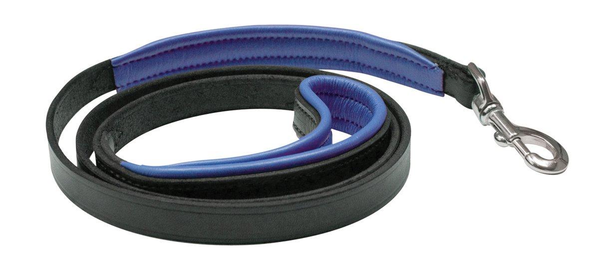 Perri's Padded Leather Dog Leash, Black/Blue, 5' x 1''