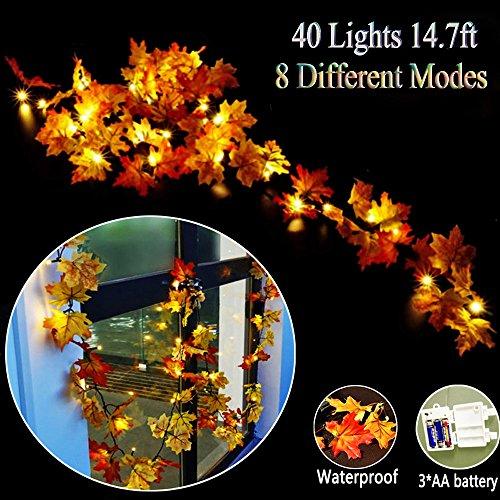 GIAGY Fall Decor,Fall Garland,Thanksgiving Decor,Christmas Decor Lighted Fall Wreath Halloween String Lights [ 14.7 Feet &40 Lights (Make A Halloween Wreath)