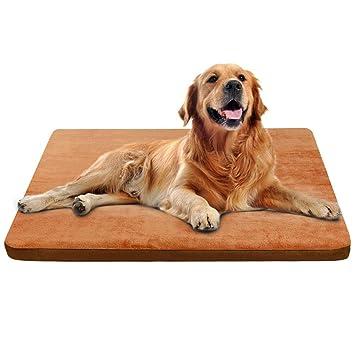 Amazon.com: Cojín de espuma para cama de perro con funda ...