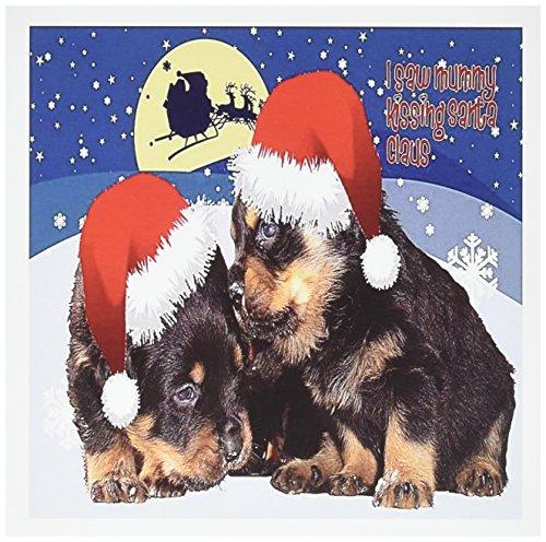 3d Rose 3dRose Santas Sleigh - rottweiler, rottweilers, r...