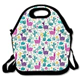 Best PackIt Ladies Lunch Bags - Insulated Lunch Box Tote Bag Llama Cactus Wilderness Review