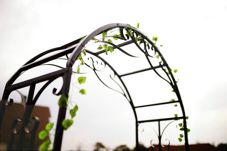 Garden Arbor for Various Climbing Plant Outdoor Garden Lawn Backyard 69 High x 39 Wide GO Steel Garden Arch with Plant Basket 1