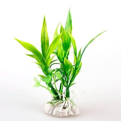 LNIMIKIY - Planta acuática para decoración de peceras - Plantas ...