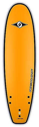 Bic Sport G-Board EVO