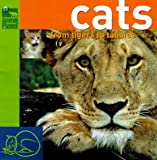 Cats, Discovery Communications Inc. Staff and Carolyn B. Mitchell, 0517800020