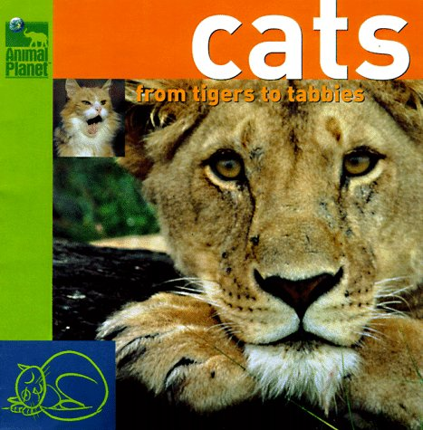 Cats: From Tigers to Tabbys (Animal Planet)