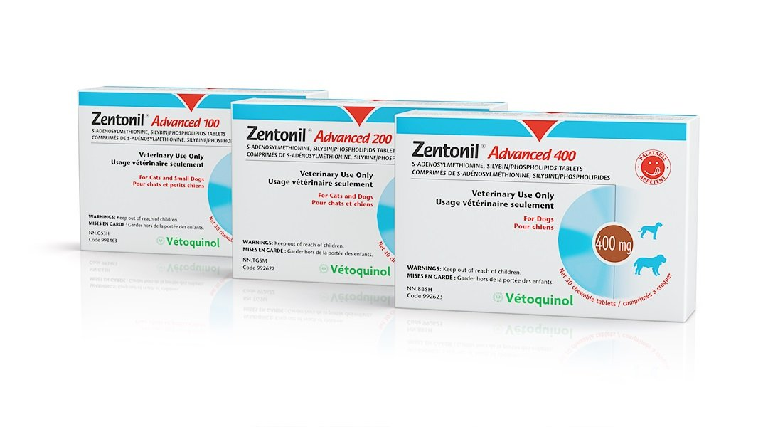 200Mg Zentonil Advanced Tablets for Cats and Dogs (Size  30 x 200mg)