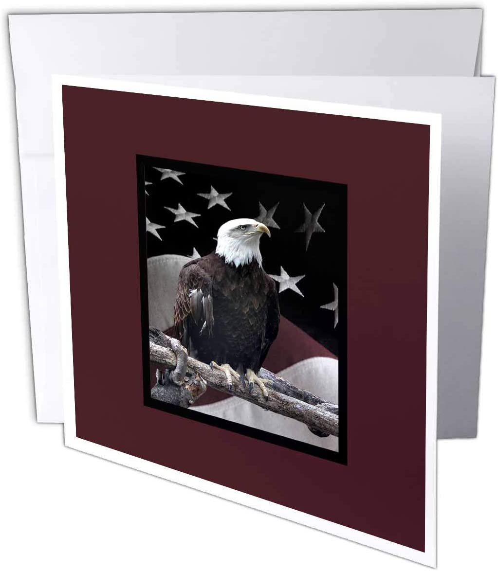 Bald Eagle on Log with American Flag - Greeting Cards, 6 x 6 inches, set of 12 (gc_77331_2)
