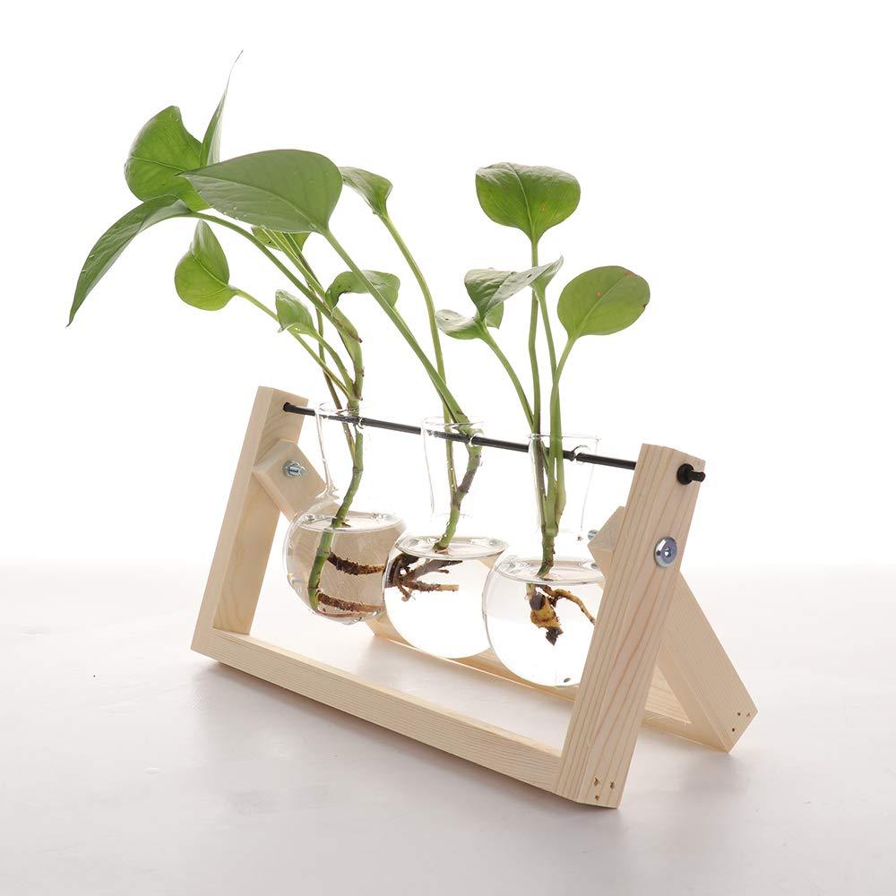 Doolland Vase en Verre Support en Bois Support pivotant en m/étal Plantes hydroponiques Home Garden Decor