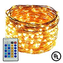 Dimmable LED String Lights,ER CHEN(TM) 100Ft 300 LEDs Copper Wire Starry String Lights with Remote Control and Adapter For Seasonal Decorative Christmas Holiday, Wedding, Parties(Warm White)