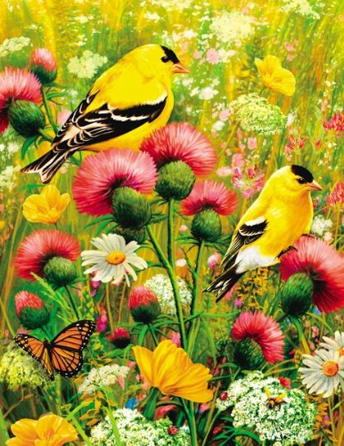 Springbok Puzzles - Goldfinch - 350 Piece Jigsaw Puzzle - Large 18 Inches by 23.5 Inches Puzzle - Made in USA - Unique Cut Interlocking Pieces - Large Pieces - Easy to Pick and Place