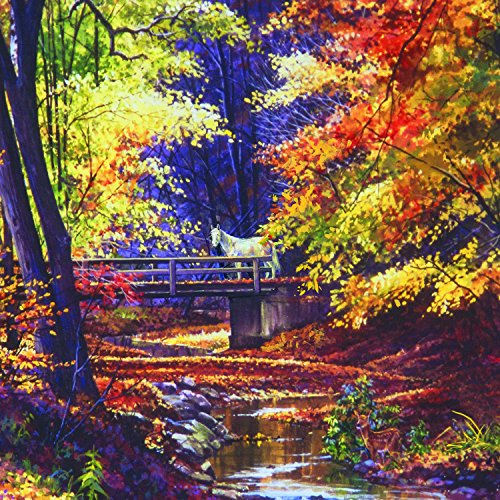 Look Closely 500 Piece Jigsaw Puzzle by SunsOut