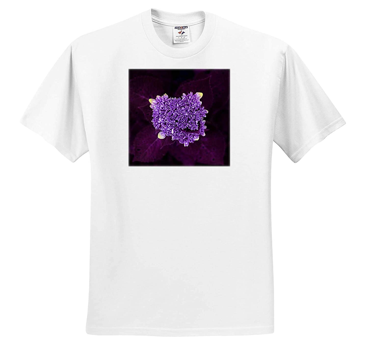 - T-Shirts Close up Photo of a Hydrangea Flower About to Burst in Purple 3dRose Stamp City Flowers