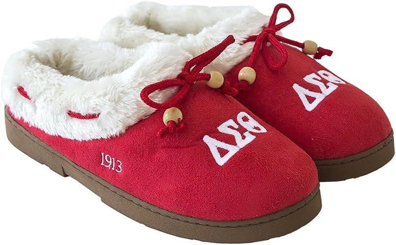 Delta Sigma Theta Sorority Shoe Bag