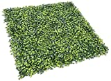 Sunshades Depot Artificial Boxwood Milan Leaf Grass Fence Privacy Screen Evergreen Hedge Panels Fake Plant Wall 20'X20' Inch (10pcs)