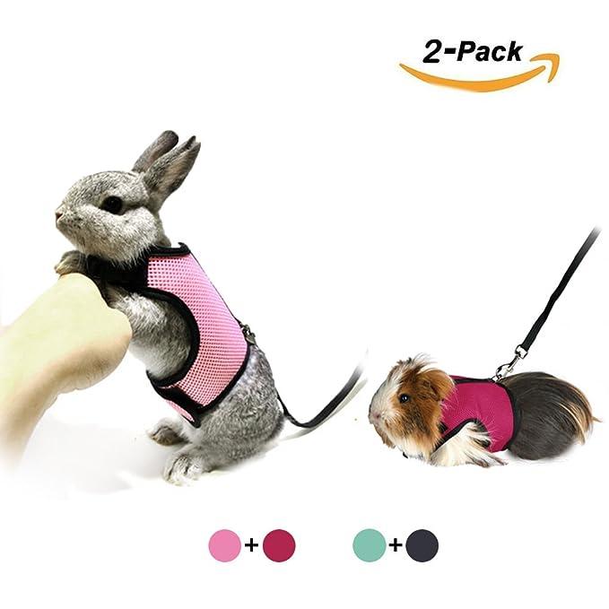 Arnés ajustable con velcro para conejo o gato, con correa elástica ...