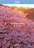 THE 5.1CH SURROUND virtual trip さくら nostalgia [Blu-ray]
