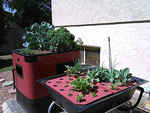 61WIF1FaCaL - Aquaponics System Complete Kit | Genesis G-24 Model | Includes 24 Sq. Ft. Grow Bed, 140 Gallon Fish Tank, Pre Cut Plumbing, Pumps, Clay Pebbles