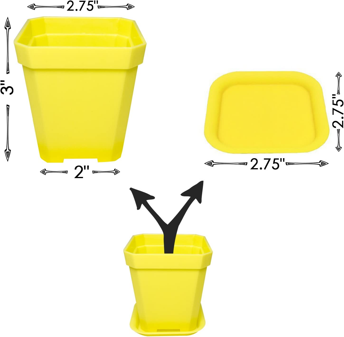 KORAM 14-Pack Colorful Flower Pots 2.7-inch Square Plastic Plant Pot for Mini Succulents Cactus, Container Planter Nursery Pots with Drain Hole and Saucer for Home Office Garden – Makes a Great Gift