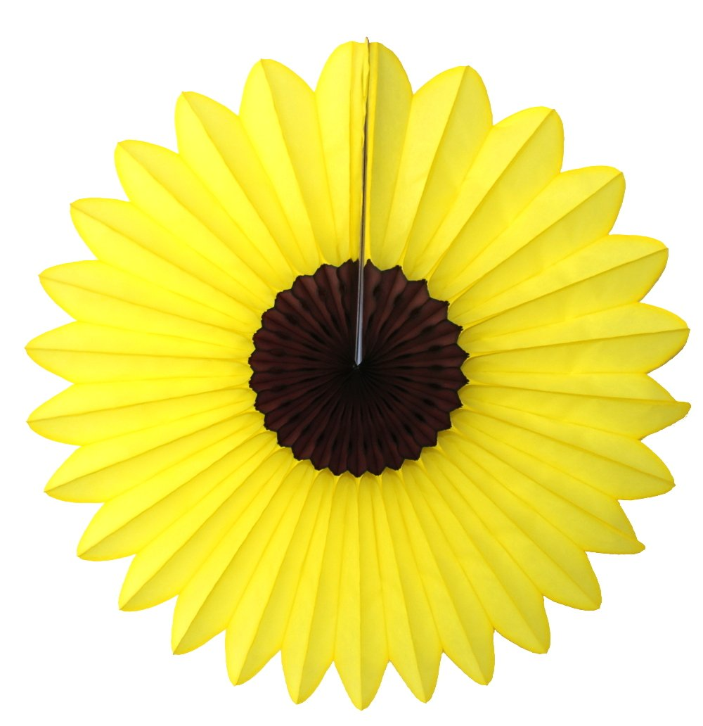 Amazon 3 Pack 18 Inch Large Tissue Paper Sunflower Fan Toys