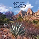 Texas, Wild & Scenic 2019 7 x 7 Inch Monthly Mini Wall Calendar, USA United States of America Southwest State Nature