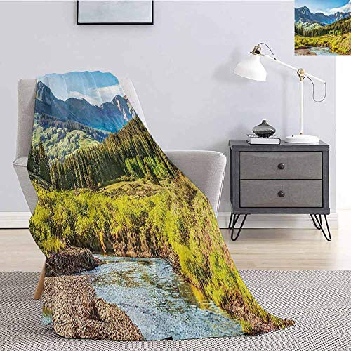 Landscape Luxury Special Grade Blanket Mountain Vista Thick Forest Trees Mountain Flowing River Grass Cloudy Sky Valley Multi-Purpose use for Sofas etc. W80 x L60 Inch Multicolor (Sofa Vista Valley)