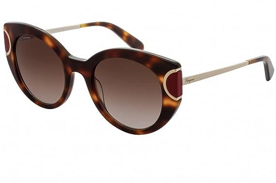 d61438ca5a4 Amazon.com  Salvatore Ferragamo Sunglasses SF829S 207 Tortoise Red ...
