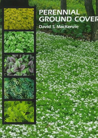 - Perennial Ground Covers