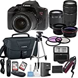 Canon EOS Rebel T6i Digital SLR Camera w/ EF-S 18-55mm IS STM + 75-300mm Zoom Lens Bundle includes Camera, Lenses, Filters, Bag, Memory Cards, Tripod, Flash and More - International Version