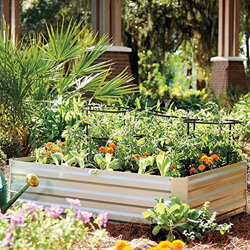 Galvanized Steel Raised Garden Bed, 36'' x 72'' x 12'' by DermaPAD