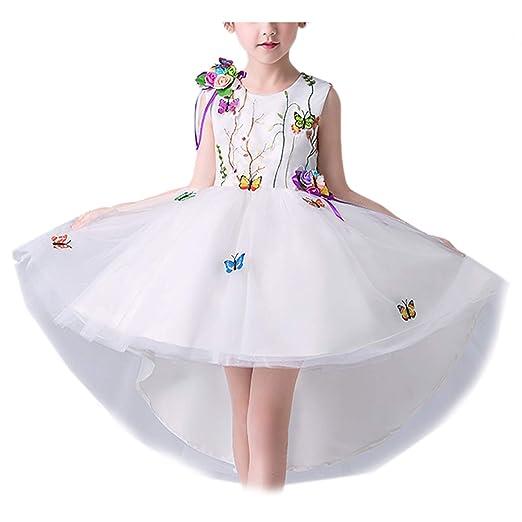 Bordado Vestido Fiesta Niña Princesa con Encajes Falda de ...