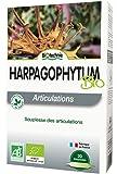 Harpagophytum bio, boîte de 20 ampoules
