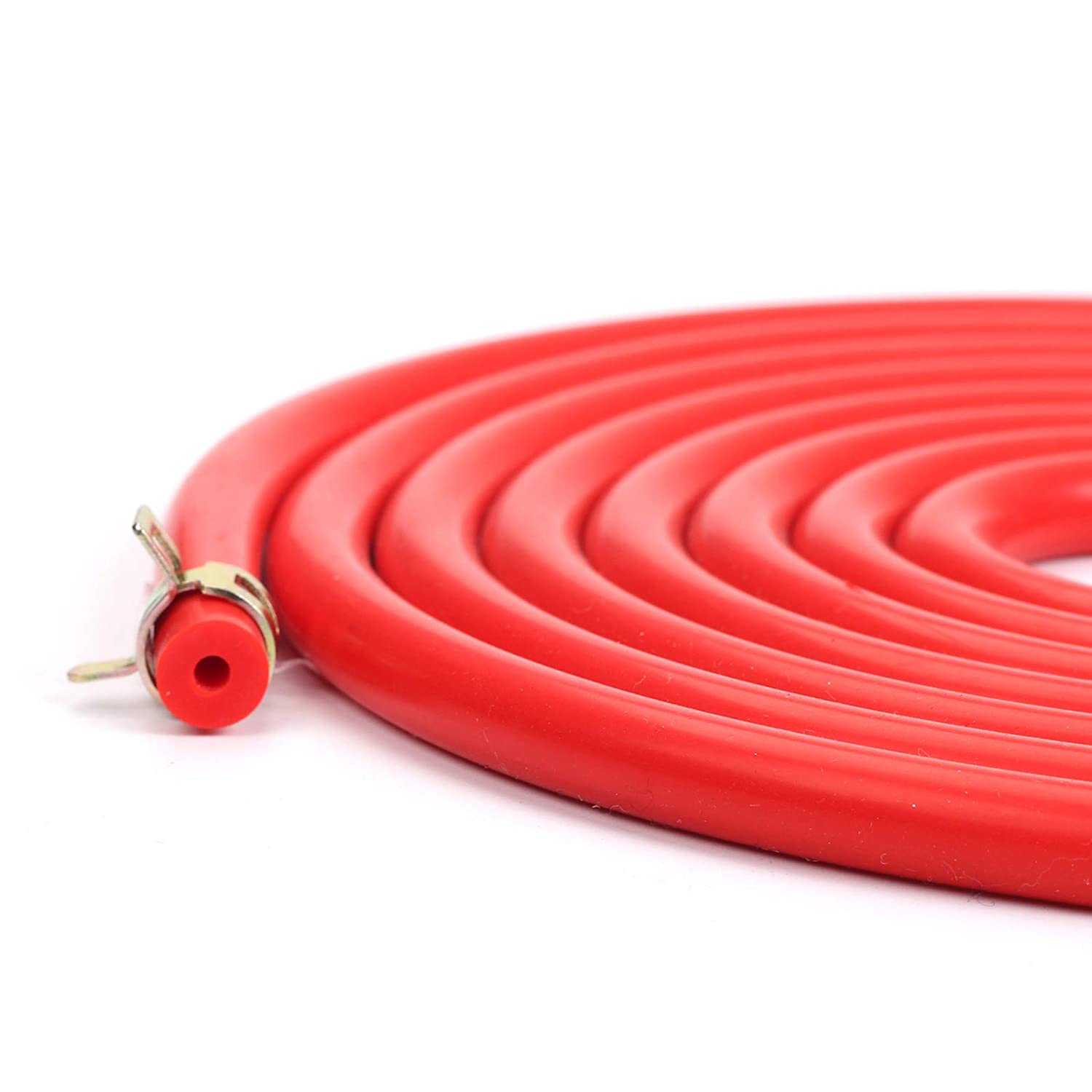 BLACKHORSE-RACING 10 Feet 3//16 High Performance Silicone Vacuum Hose 10 Pcs 10mm Spring Clips Fuel Hose Line Water Pipe Clamps Fasteners