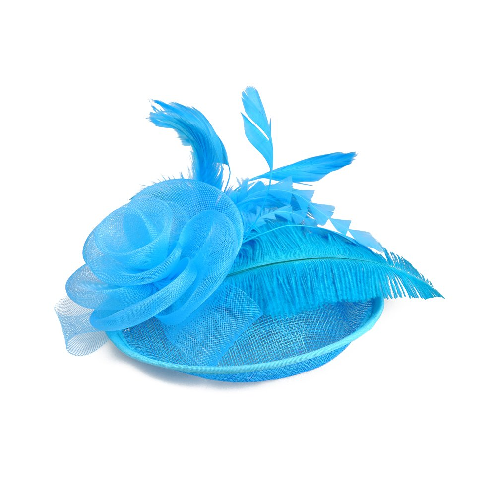 Feather Fascinators Hats for Women Girls Cocktail Flower Kentucky Derby Headband Hair Clip Tea Party Mesh Hat (Lake Blue)