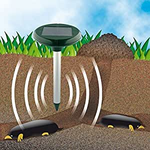 ounona funciona con energía solar ultrasónico Gopher de topo campañol ahuyentador de roedores repelente de movimiento de luz para jardín Patio al aire libre Control de plagas