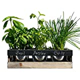 Viridescent Indoor Herb Garden Kit - Kitchen Wooden Windowsill Planter...