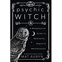 Psychic Witch: A Metaphysical Guide to Meditation, Magick & Manifestation (English Edition)