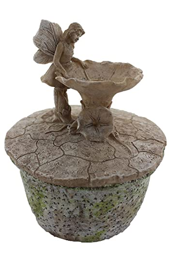 Amazoncom Mini Miniature Fairy Garden Fountain with Pond Pump
