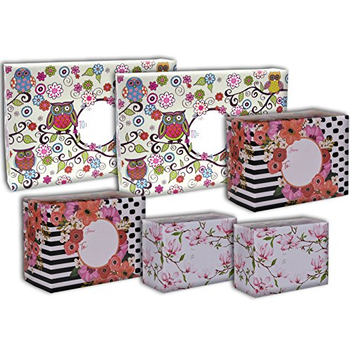 Jillson Roberts 6-Count Decorative Mailing Boxes Available in 5 Different Assortments, Assorted Sizes and Designs, Fanciful Florals