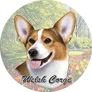 E&S Pets Welsh Corgi Coaster, 3″ x 3″