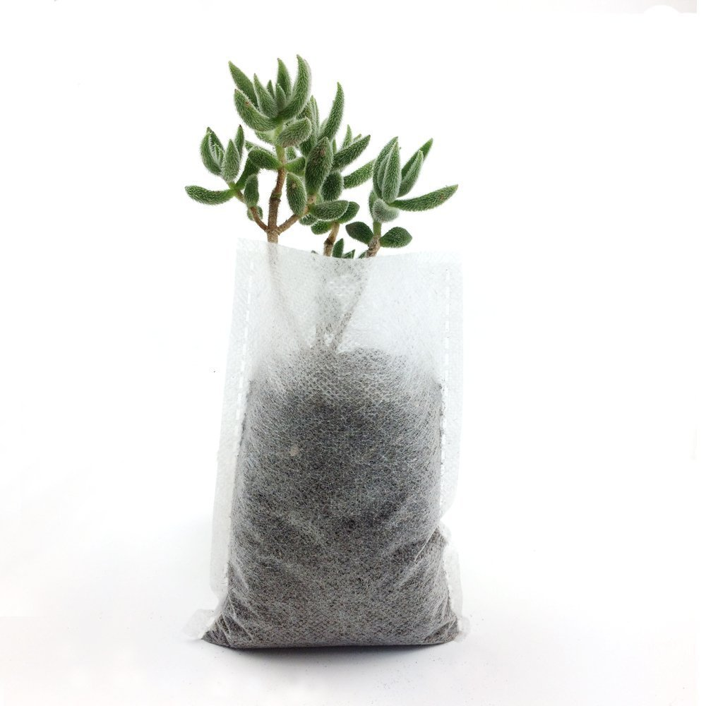 200Pcs Biodegradable Non-woven Nursery Bags Plant Grow Bags Fabric Seedling Pots jowneel Planting bags