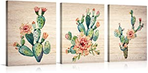 3 Panels Watercolor Cactus Wall Art Pink Succulent Dessert Botanical Plant Flower Painting Prints Posters Artwork Vintage Rustic Style for Modern Living Room Decor (Cactus, 12x16in)