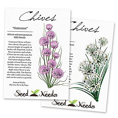 Chives & Garlic Chives Duo (Allium schoenoprasum / Allium tuberosum) Non-GMO Seeds by Seed Needs