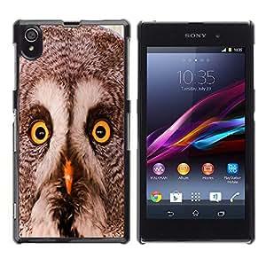 TopCaseStore / la caja del caucho duro de la cubierta de protección de la piel - Owl Winter Smart Animal Bird Nature - Sony Xperia Z1 L39 C6902 C6903 C6906 C6916 C6943