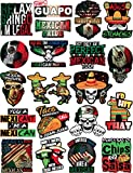 20 Mexican Stickers - Calcomanías Mexicanas - 100% Vinyl Stickers for Adults - Funny Decals for Hardhat, Construction, Laptop, Water bottle or Lunchbox. Pegatinas cascos. Calcomanias para autos