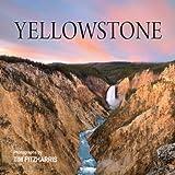 Yellowstone, Tracy C. Read, 1554077869