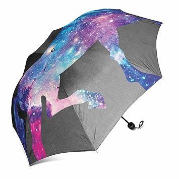 Paraguas plegable, resistente al viento, automático, compacto, resistente a la lluvia,