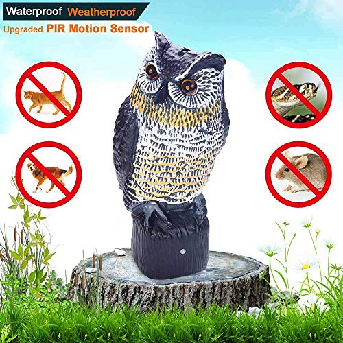 Head Decoy Owl - Owl with Flashing Eyes Decoy Owls Scarecrow Eyes & Sounds Solar Powered Upgraded PIR Motion Sensor Bird Pest Repellent