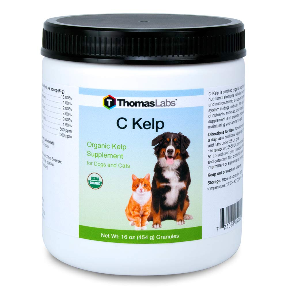 Thomas Labs C Kelp - Organic Kelp Supplement for Dogs & Cats - Rich in Essential Nutrients for Immune Support - (16 Ounces, Granules)