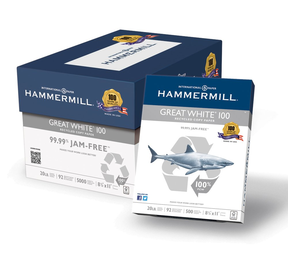 Hammermill Paper, Great White 100% Recycled Printer Paper, 8.5 x 11 Paper, Letter Size, 20lb Paper, 92 Bright, 10 Reams / 5,000 Sheets (086790C) Acid Free Paper